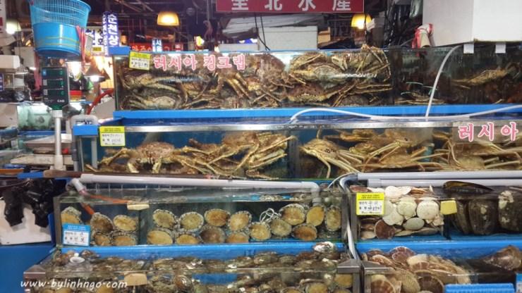 noryangjin_fish_market_03