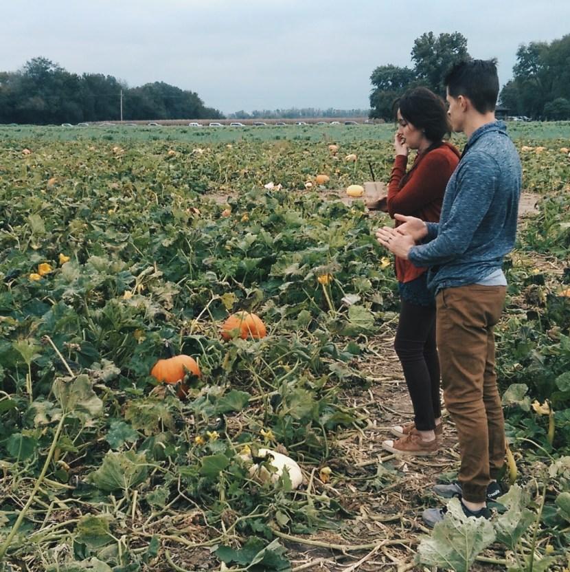 ByManna Choosing Pumpkins