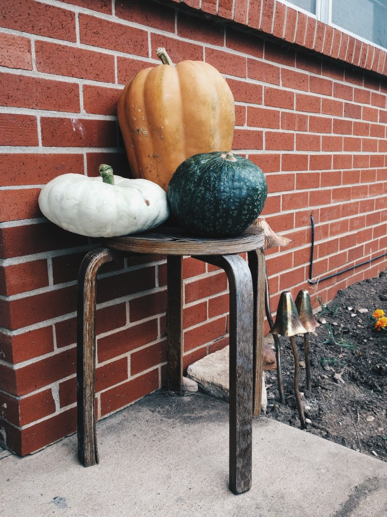 ByManna Pumpkins as decorations
