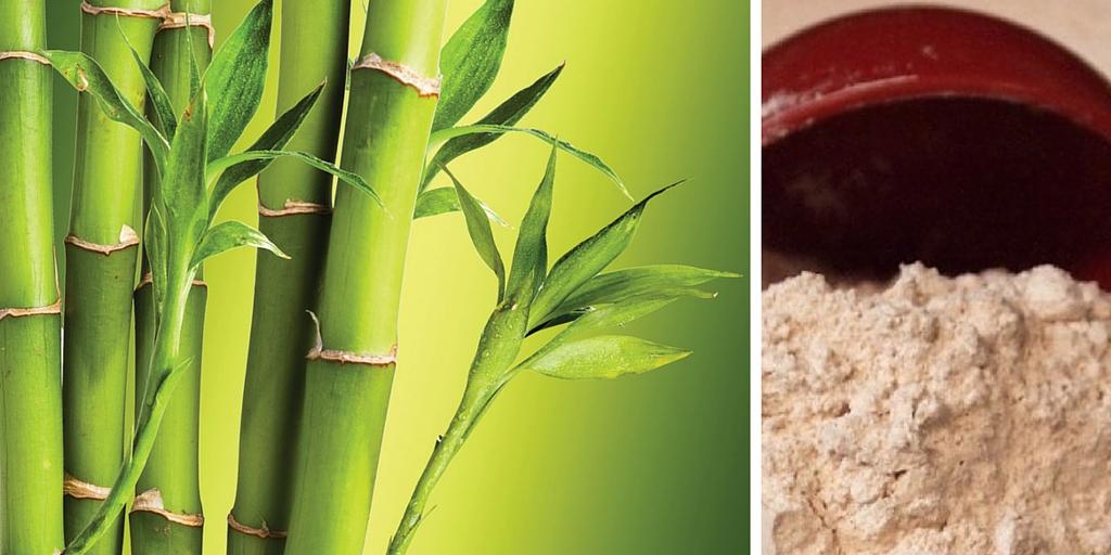 Farina di Bamboo (o Fibra di Bamboo)