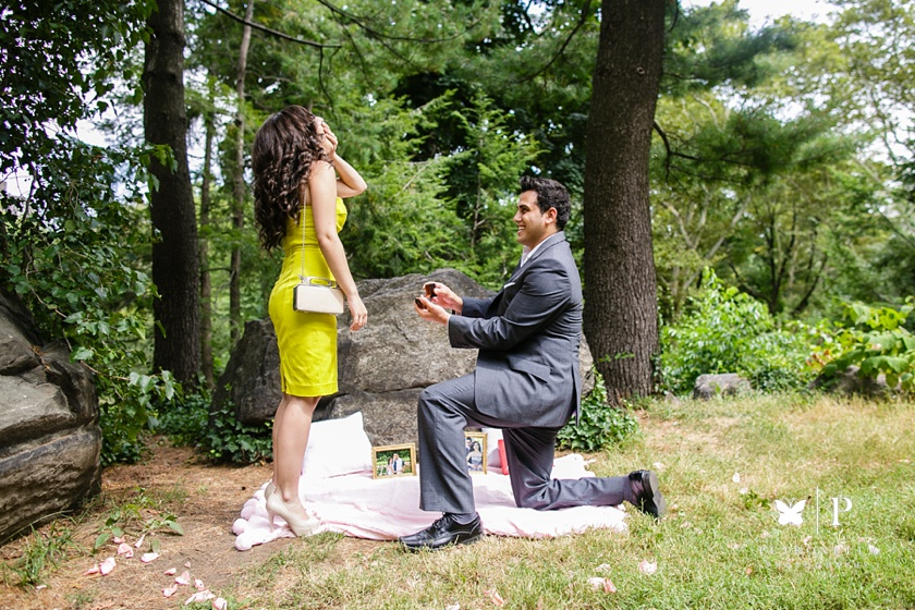 Central_Park__Lebanese_Marriage_Proposal_Verragio engagement ring_Petronella_Photography (11)