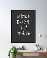 ins-normale-mennesker
