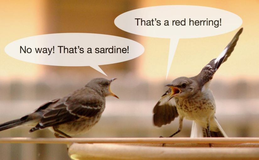 A picture of two birds arguing.