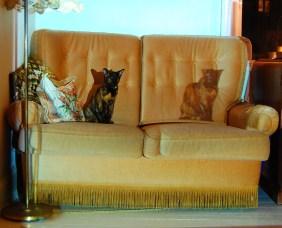 Home 2010 - katte i sofa