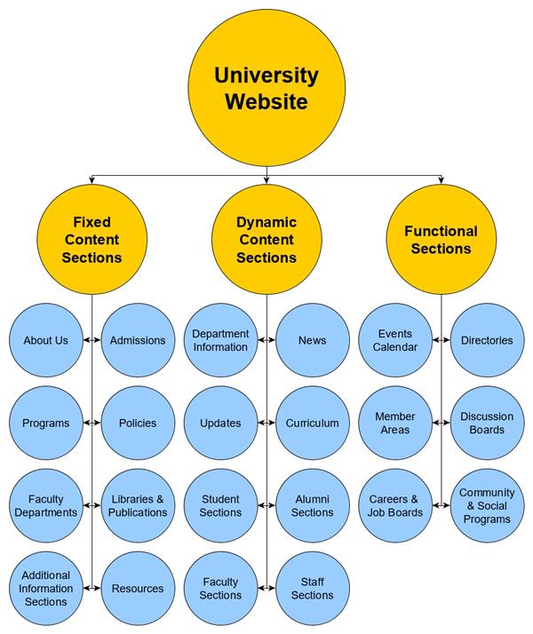 A university website is a complex digital ecosystem.