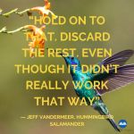 Hummingbird Salamander by Jeff Vandermeer_Quote