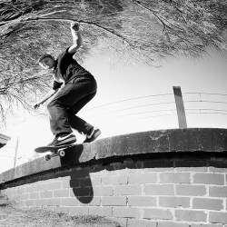 Feature Harry-Clark-bs-lip-moey-the-4-skate-co-344-1
