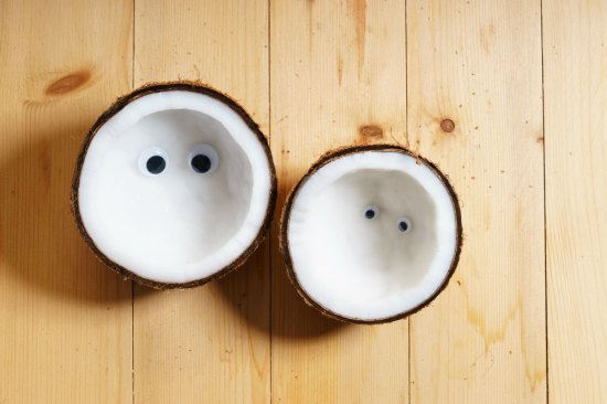 YA Author Tom Hoover on Coconuts