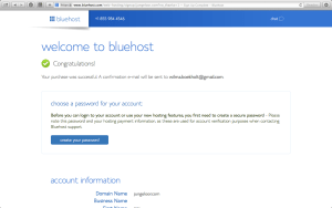 How to start a (great looking) blog with wordpress on Bluehost