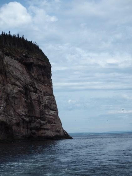 Île Bonaventure