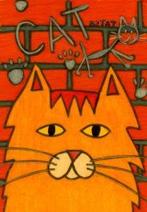 Graffiti-cat-drawing