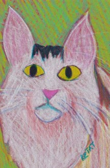 Maine Coon cat drawing BZTAT