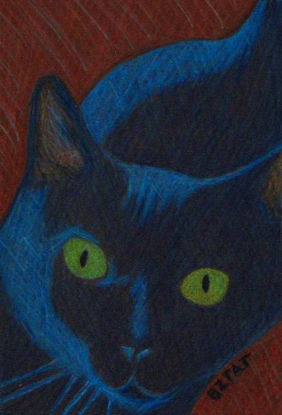 Sweet Pea Black cat custom pet portrait drawing by BZTAT