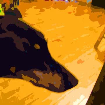 Doberman Dog Custom Digital Fine Art Pet Portrait by Animal Artist BZTAT