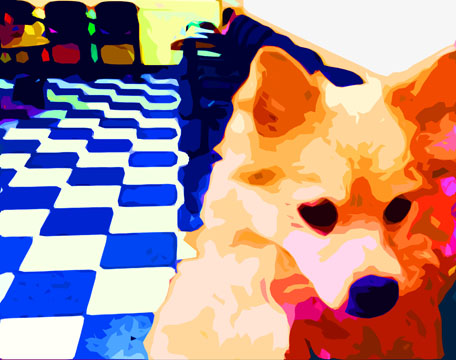 Pomeranian Dog  Custom Digital Fine Art Pet Portrait by Animal Artist BZTAT