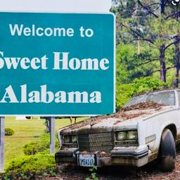 You've spent your entire life dreaming of buying a summer vacation home, and now you're ready to make it happen. Sweet Home Alabama All Summer Long Mash Song Lyrics And Music By Lynyrd Skynyrd Kid Rock Arranged By Of Allan Svi On Smule Social Singing App