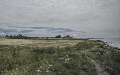 デンマークの自然 -4-