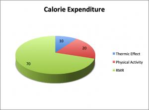 Calorie Expenditure