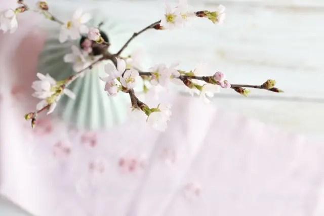 桜のいけ花