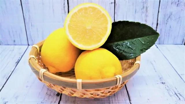 【あさイチ】究極のレモンスカッシュのレシピ(作り方)!国吉純さんが伝授!10月5日