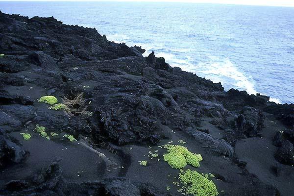 Surtsey 8