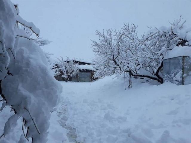 برفانی تودوں سے متاثرہ وادی نیلم میں دوبارہ برفباری، امدادی کام روک دیا گیا