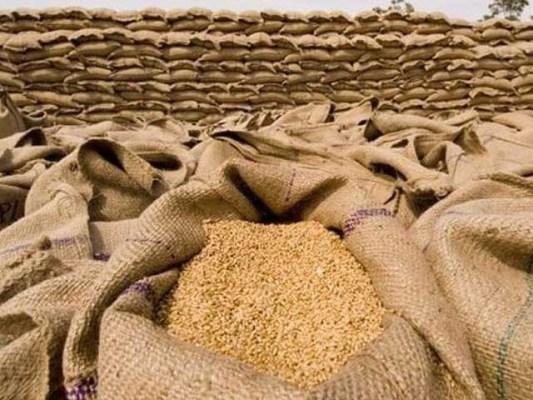 ضلع نواب شاہ سے کروڑوں کی گندم غائب اور فروخت کرنے کے شواہد مل گئے، سیکریٹری فوڈ کو طلبی کا نوٹس (فوٹو: فائل)