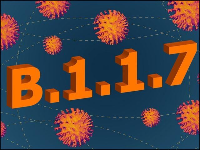 کورونا وائرس کی نئی قسم کا پھیلاؤ مارچ تک شدید ہوجائے گا، ماہرین
