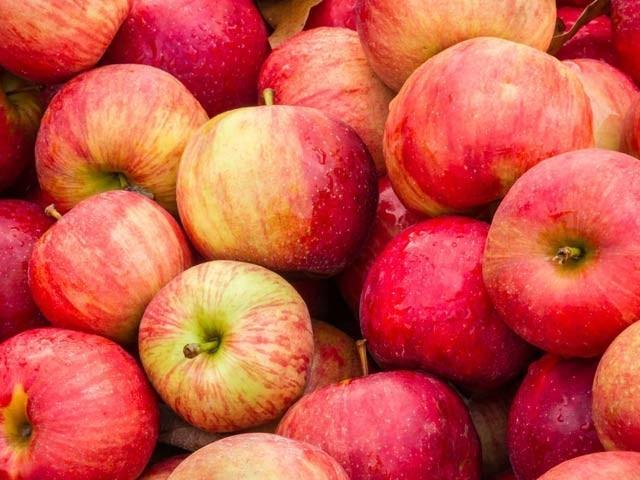 ایک سیب روزانہ اب الزائیمرکوبھی دور بھگائے