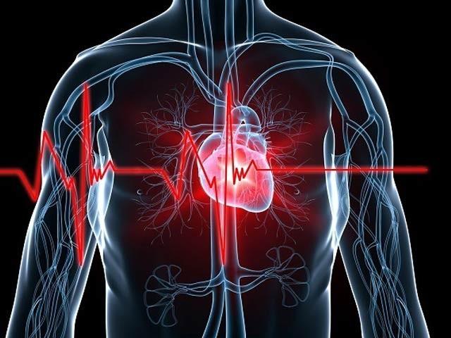 گردن میں بڑھی ہوئی چربی اور امراضِ قلب کے درمیان تعلق دریافت