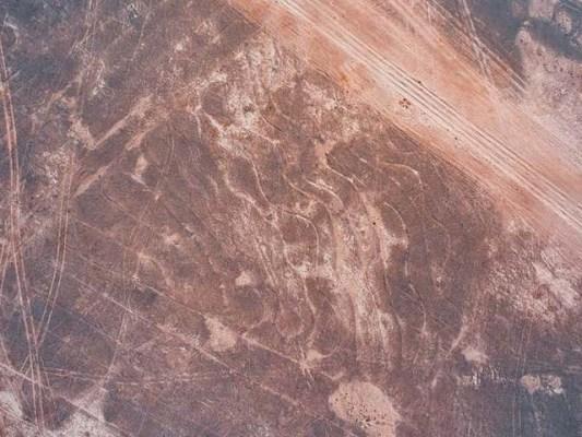 دو فرانسیسی ماہر باپ اور بیٹے نےبھارتی ریگستان تھر میں دنیا کی سب سے بڑی زمینی ڈرائنگ دریافت کی ہے۔ فوٹو: کینیڈا ایکسپریس نیوز