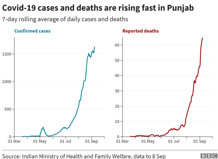 A graph showing the daily increase in cases and deaths in Punjab.