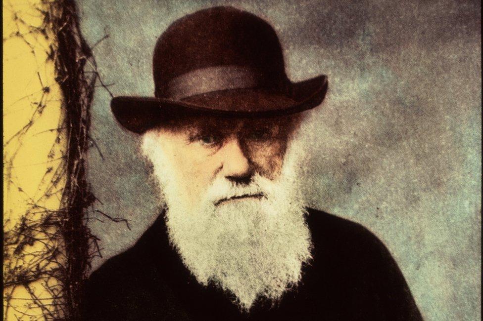 Darwin'in 1874'te çekilen bu fotoğrafı 1995'te renklendirildi