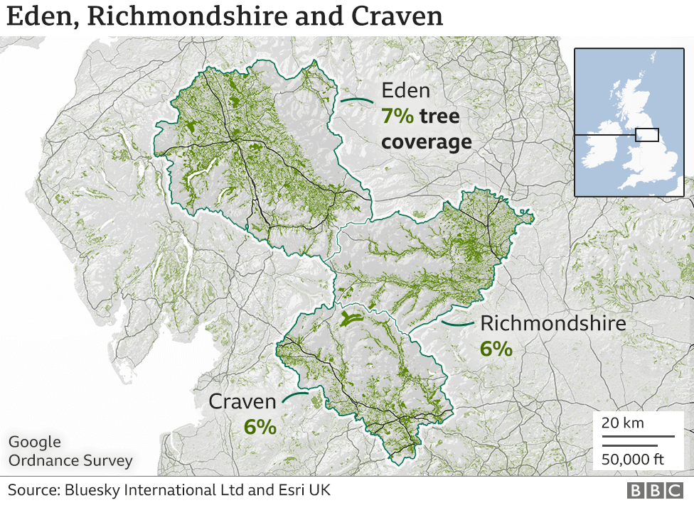 A graphic showing the tree cover in Eden 7%, Craven 6% and Richmondshire 6%. They are all in the north close to the Pennines