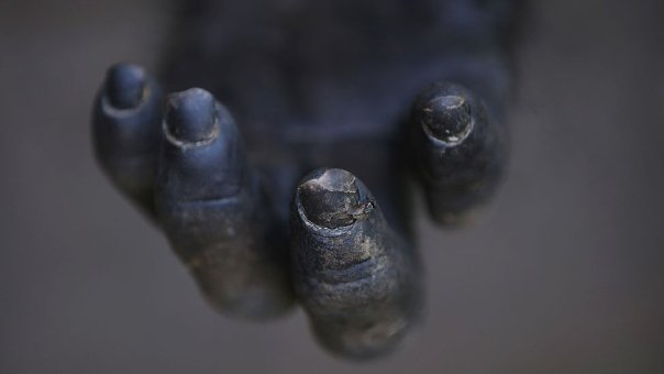 Mano de un chimpancé