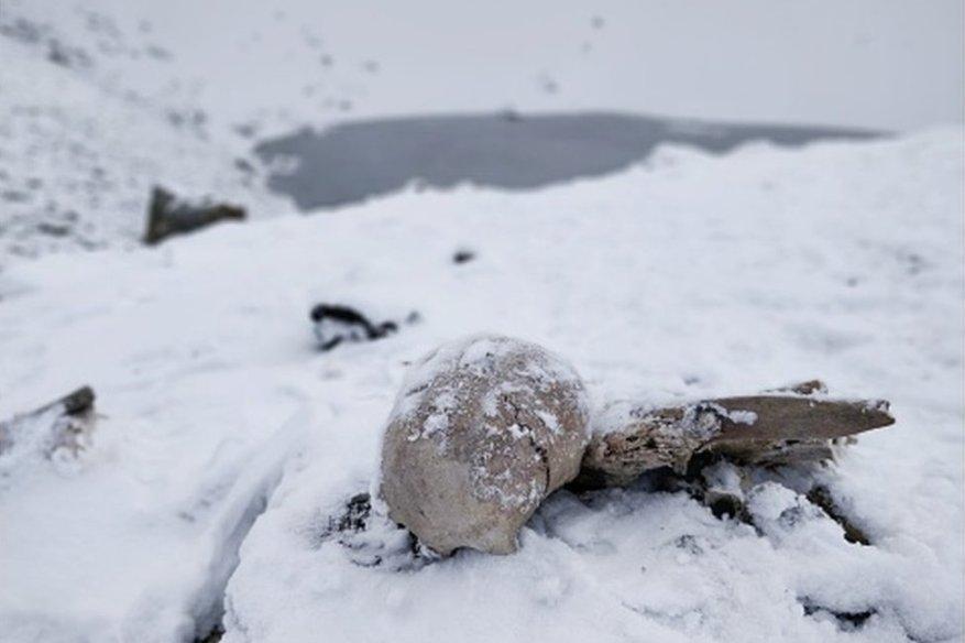 india, skull lake, skeleton