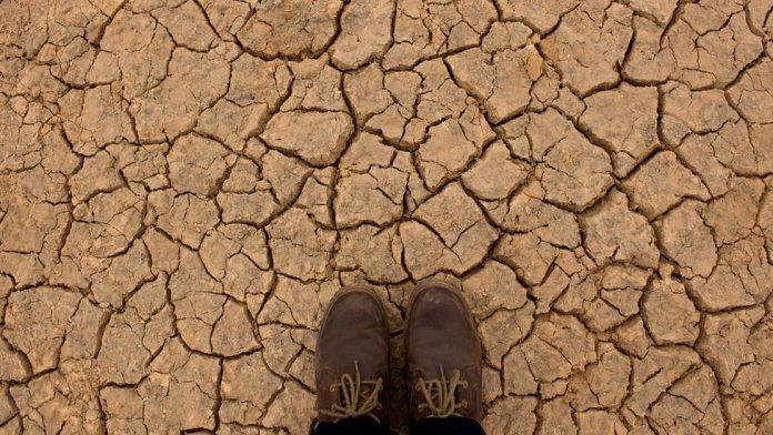 Feet on dry ground.