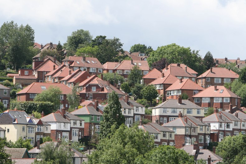 A photograph showing trees in the gardens of houses in Sheffield