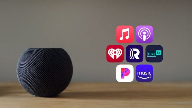 An Apple hompodmini is seen in grey mesh with a range of icons for music and radio services