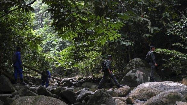 Search team in jungle