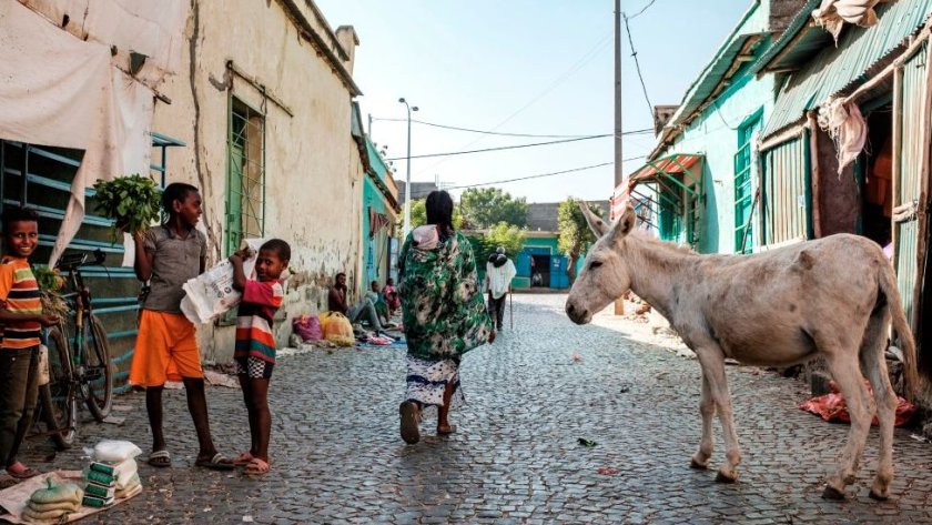 A donkey and residents on a street in Humera, Ethiopia