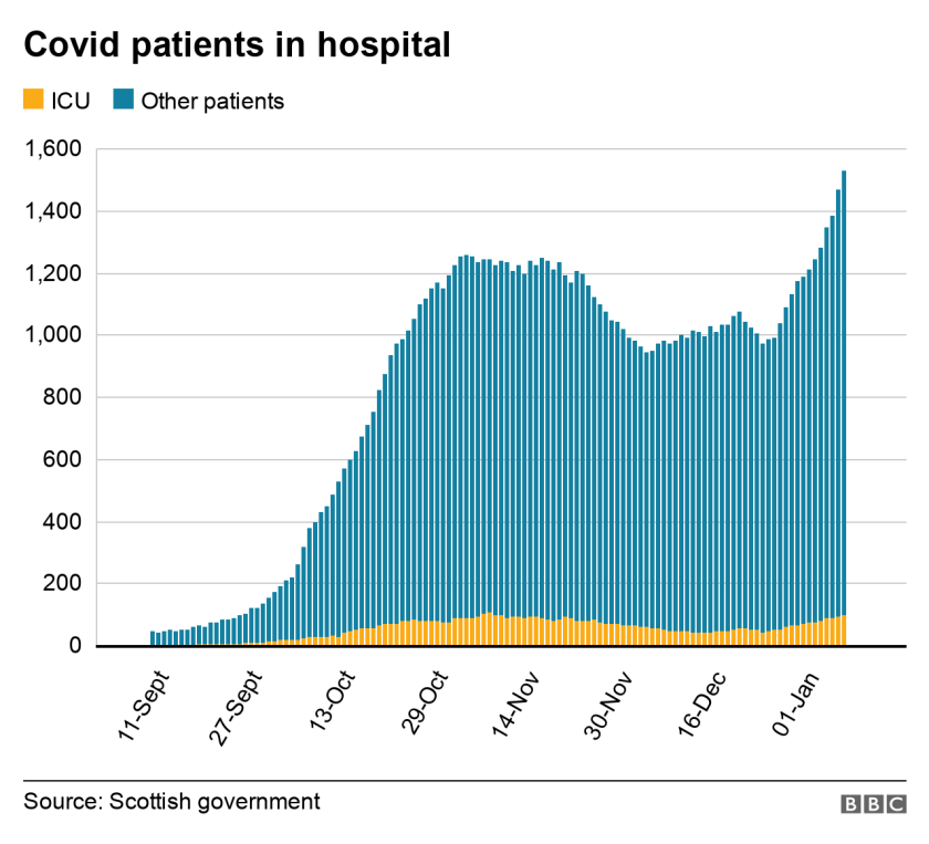 graph showing covid patients in hospital