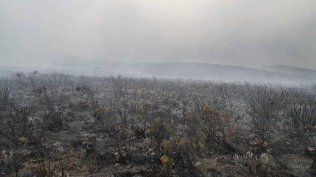 Cendres sur le Kilimandjaro