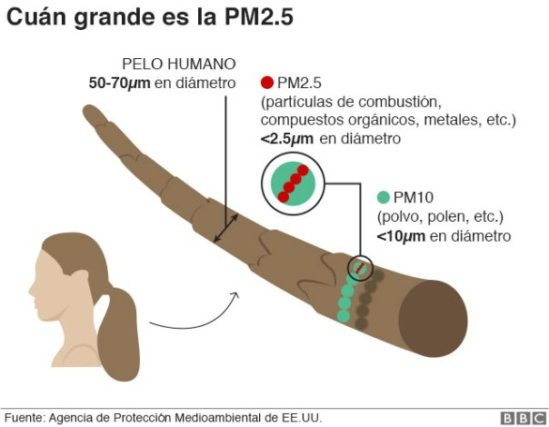 Gráfico que muestra cuánto mide la PM2.5