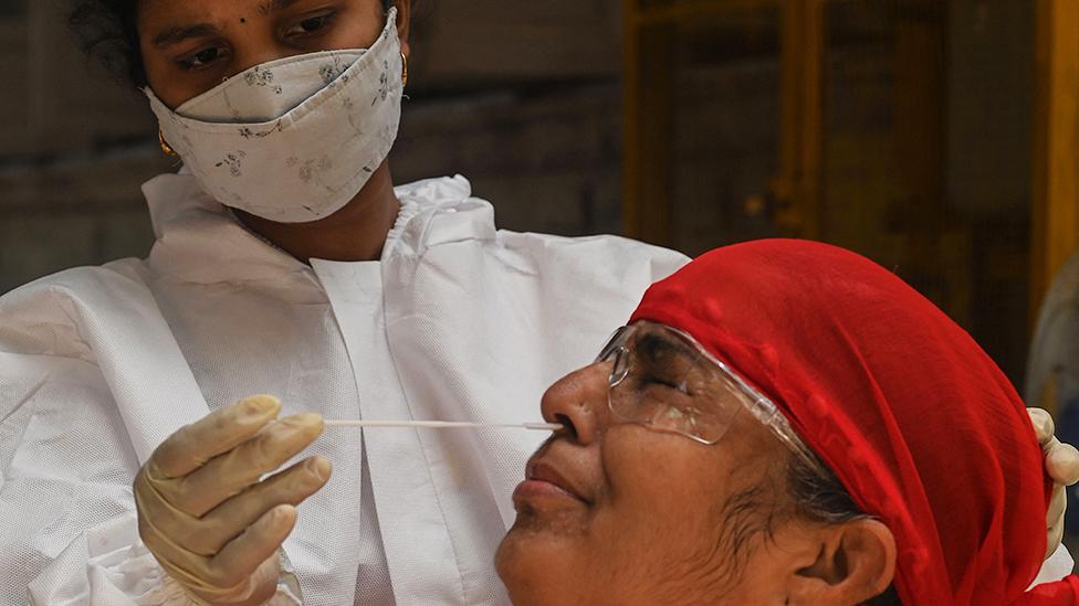 Champignon Noir Inde Covid . Covid La Mucormycose Le Tres Dangereux Champignon Noir Qui Mutile Les Patients En Inde Bbc News Afrique