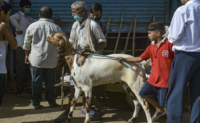 'Alarming State Of Affairs': Supreme Court Scolds Kerala Over Bakrid Move