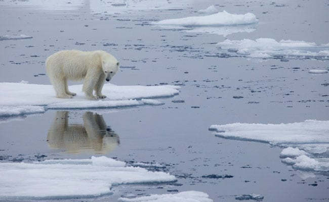 Norway's Arctic Archipelago Records Highest Temperature In Over 40 Years