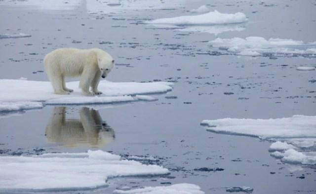 नॉर्वे का आर्कटिक द्वीपसमूह 40 वर्षों में सबसे अधिक तापमान रिकॉर्ड करता है