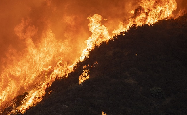 Southern California 'Apple Fire' Forces Nearly 8,000 To Evacuate