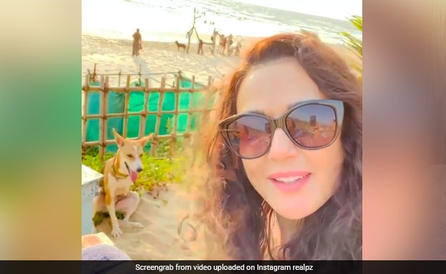 This Throwback Video Of Preity Zinta Enjoying The Sunset With Her 'New Friend' Is All Things Nice